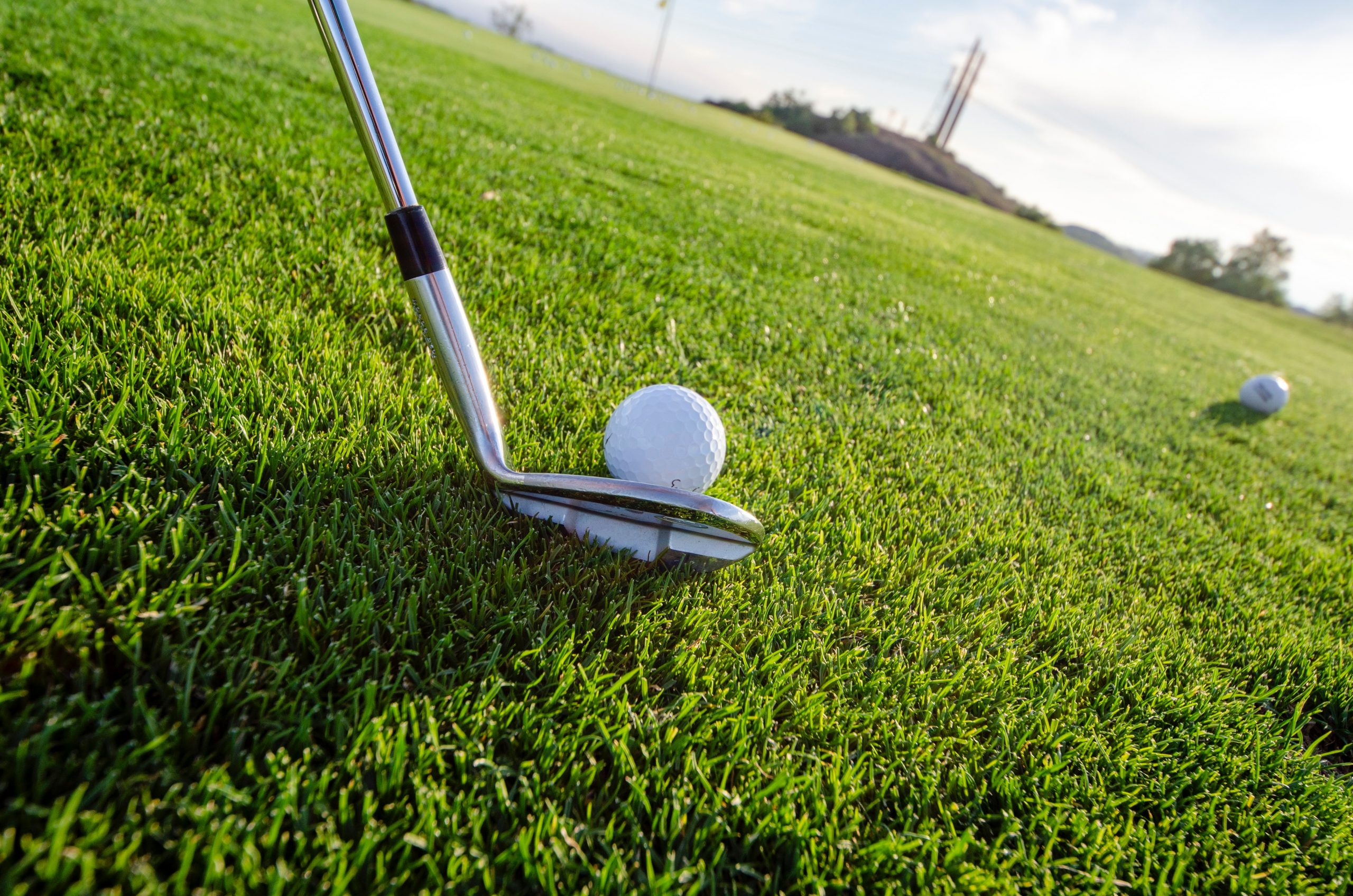 Golf ball and Gold Club on grass